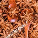 le secret des épices (partie 1)