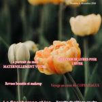 Je lance mon magazine