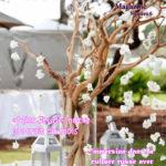 Wardrose Magazine 6